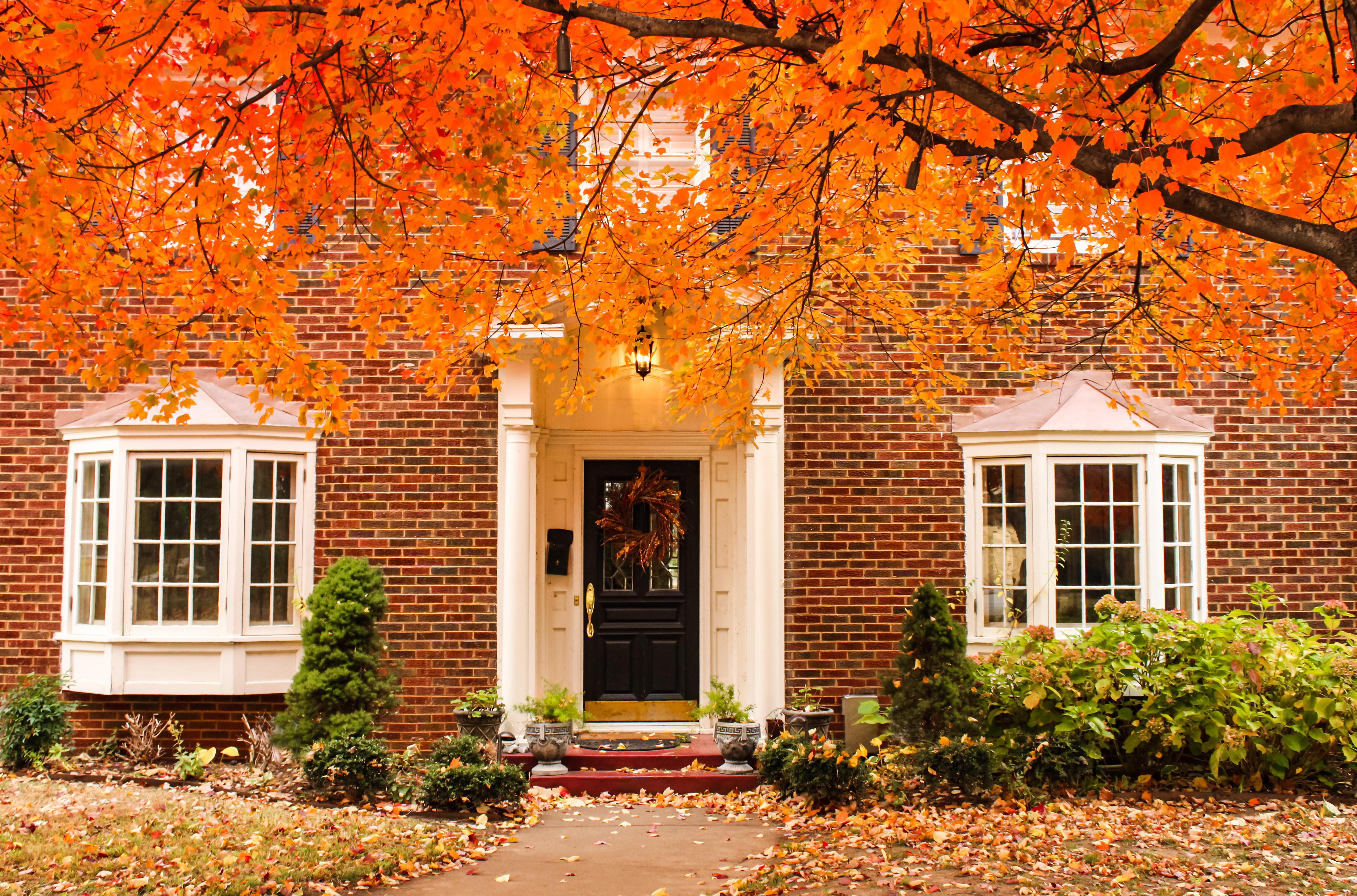 Home, Fall, Autumn, Leaves