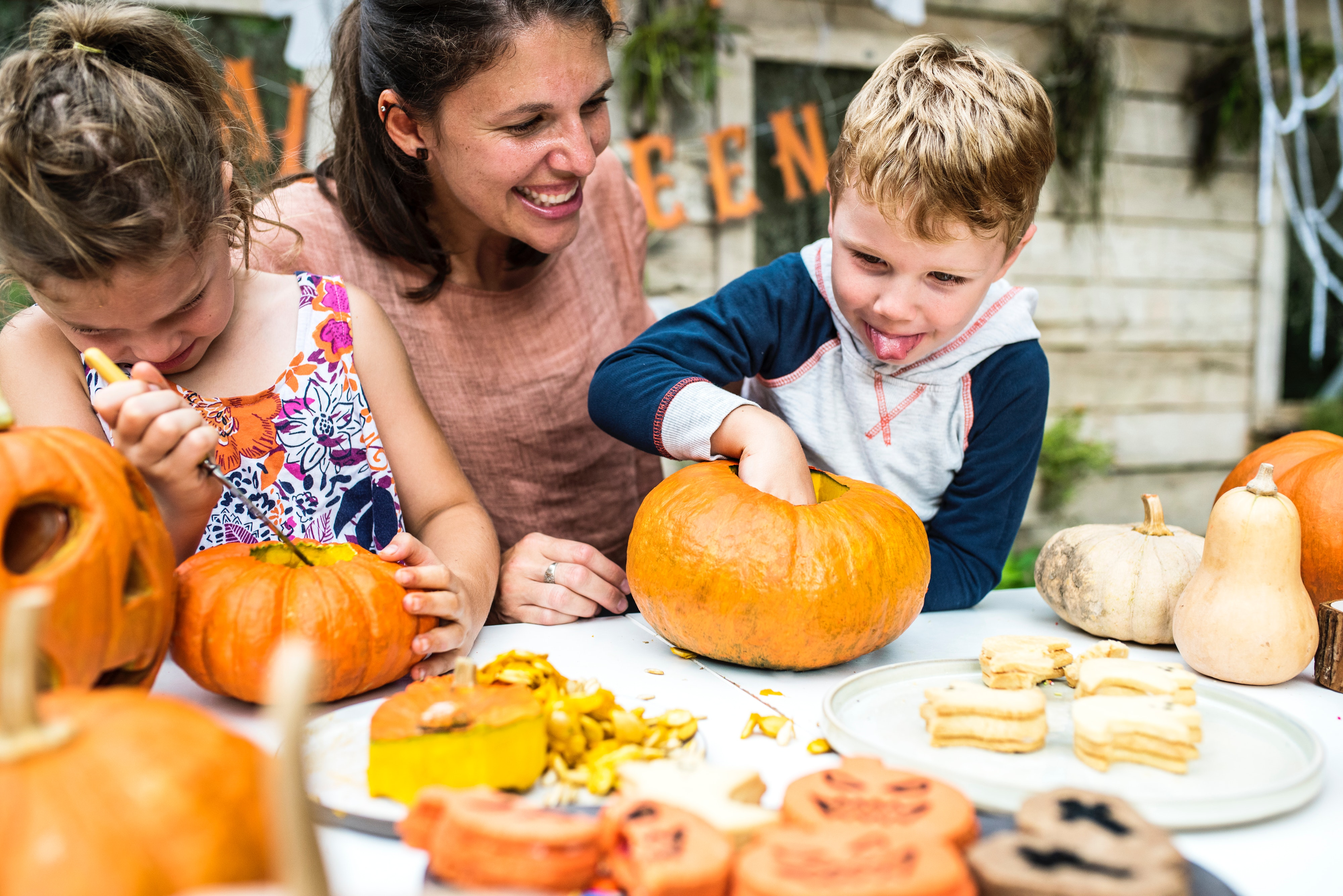 Pumpkin Carving, Pumpkin, Fall, Halloween