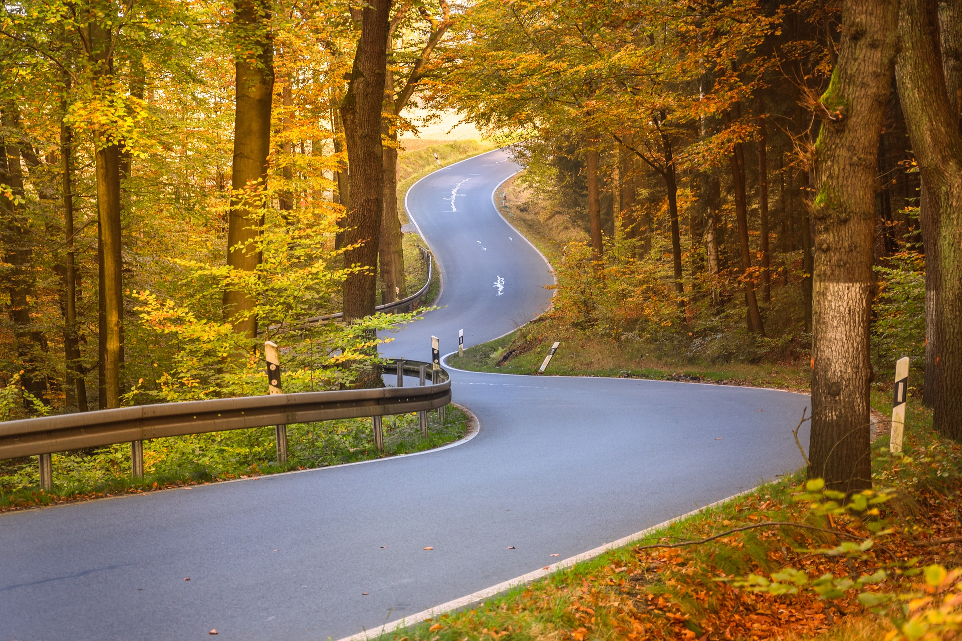 Winding road, rural, trees