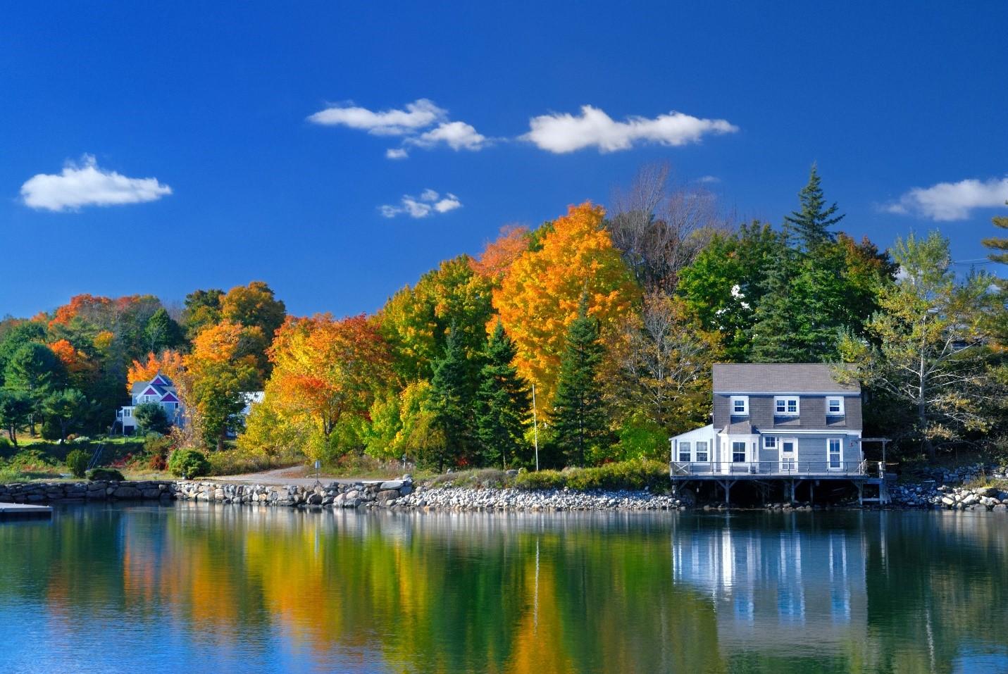 House, Seasonal Property, Trees, Lake