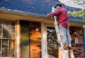 Cleaning, Cleaning Gutters, Ladder, Home Maintanence