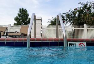 Pool, Pool Safety, Pool Ladder, Water