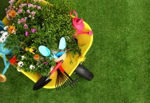 Spring, Lawncare, Gardening